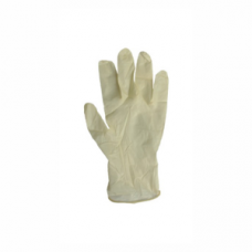 Latex Examination Gloves (N/S) - Powder Free LARGE